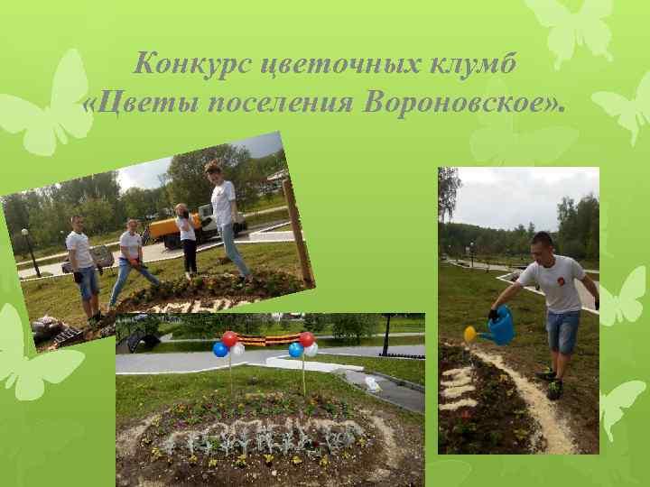 Конкурс цветочных клумб «Цветы поселения Вороновское» .