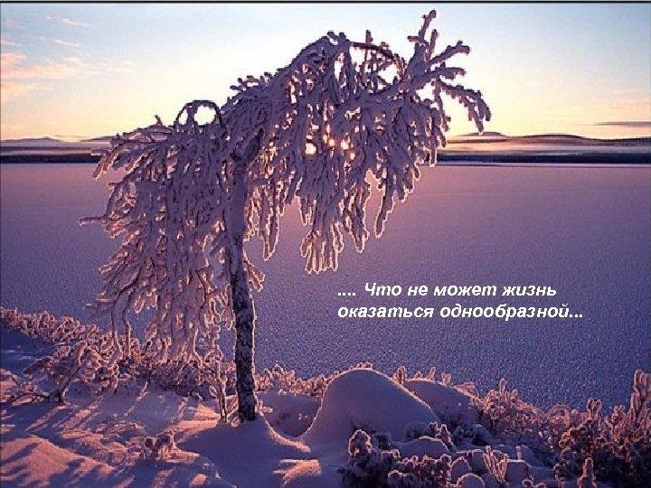 . . Что не может жизнь оказаться однообразной. . .