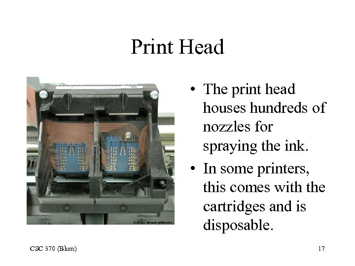 Print Head • The print head houses hundreds of nozzles for spraying the ink.