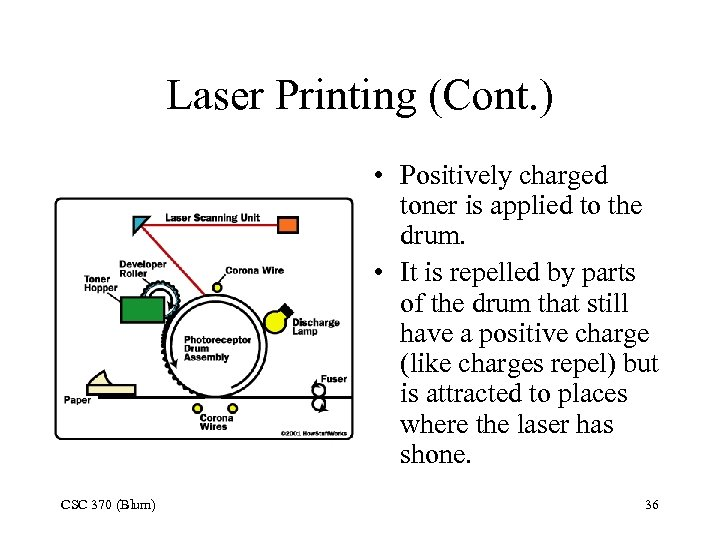 Laser Printing (Cont. ) • Positively charged toner is applied to the drum. •