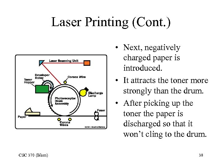 Laser Printing (Cont. ) • Next, negatively charged paper is introduced. • It attracts