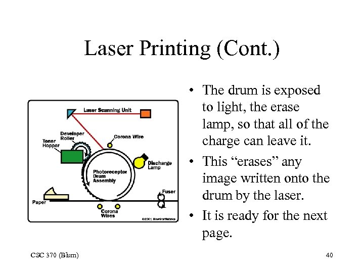 Laser Printing (Cont. ) • The drum is exposed to light, the erase lamp,