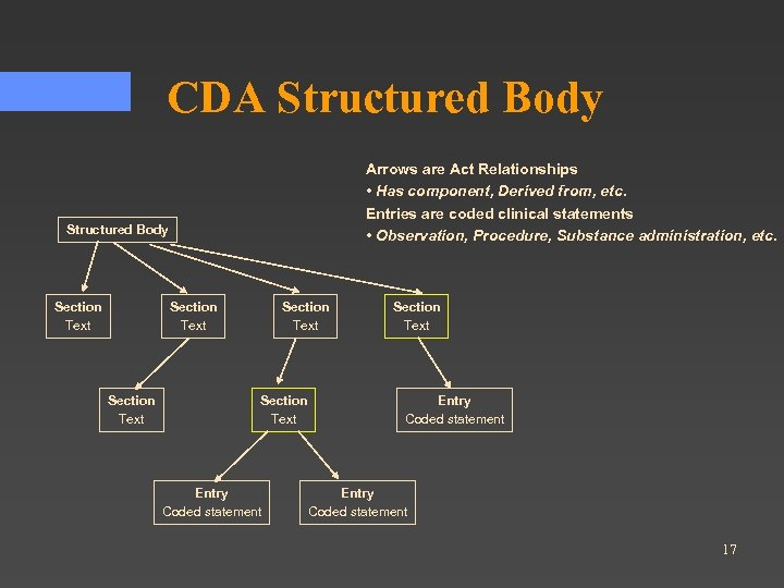 CDA Structured Body Arrows are Act Relationships • Has component, Derived from, etc. Entries