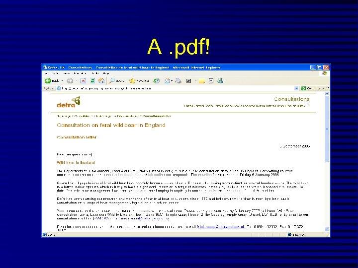 A. pdf!