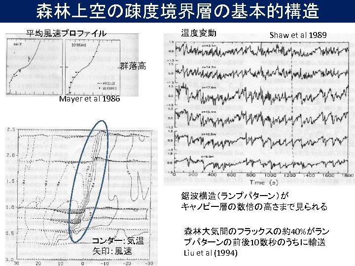 森林上空の疎度境界層の基本的構造 温度変動 平均風速プロファイル Shaw et al 1989 群落高 Mayer et al 1986 鋸波構造(ランプパターン)が キャノピー層の数倍の高さまで見られる
