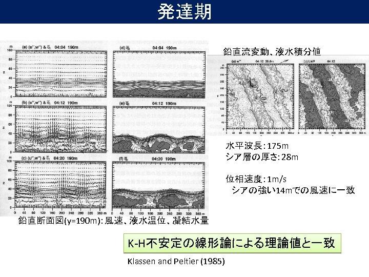 発達期 鉛直流変動、液水積分値 水平波長: 175 m シア層の厚さ: 28 m 位相速度: 1 m/s  シアの強い14 mでの風速に一致 鉛直断面図(y=190