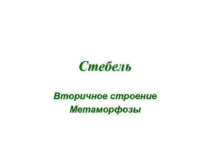 Стебель Вторичное строение Метаморфозы