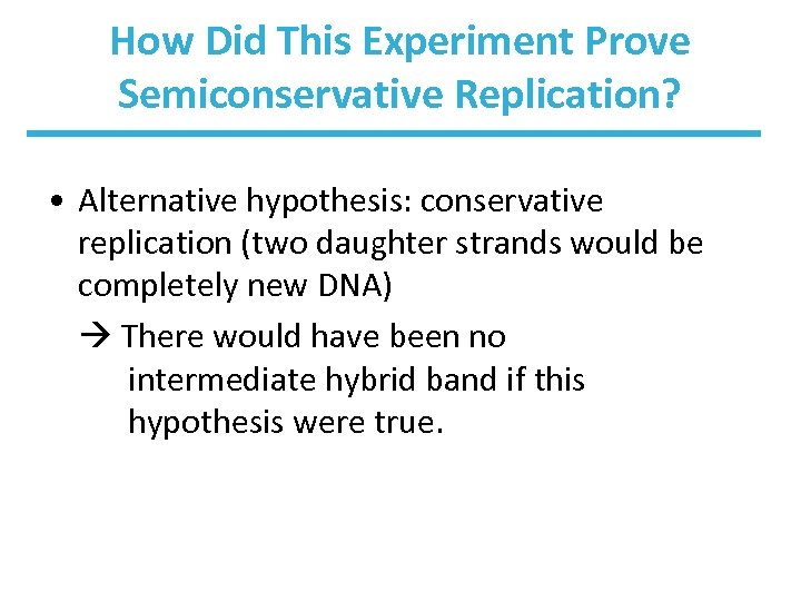 How Did This Experiment Prove Semiconservative Replication? • Alternative hypothesis: conservative replication (two daughter