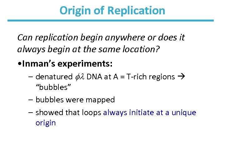 Origin of Replication Can replication begin anywhere or does it always begin at the