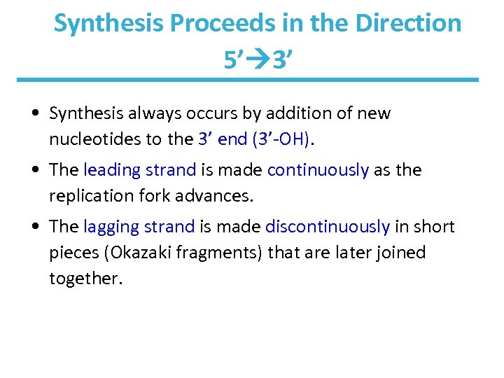Synthesis Proceeds in the Direction 5' 3' • Synthesis always occurs by addition of