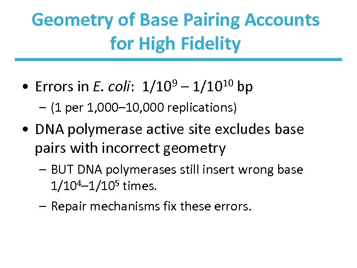Geometry of Base Pairing Accounts for High Fidelity • Errors in E. coli: 1/109