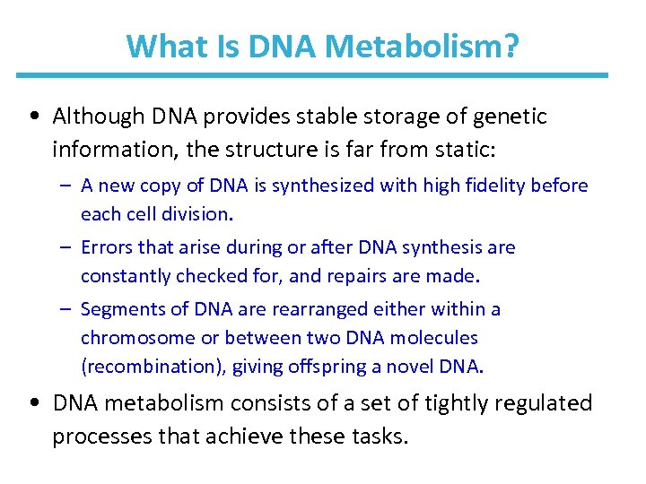 What Is DNA Metabolism? • Although DNA provides stable storage of genetic information, the
