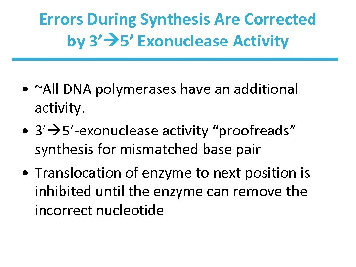Errors During Synthesis Are Corrected by 3' 5' Exonuclease Activity • ~All DNA polymerases