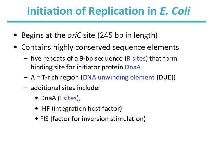 Initiation of Replication in E. Coli • Begins at the ori. C site (245