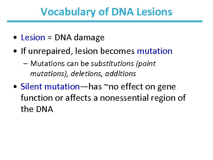 Vocabulary of DNA Lesions • Lesion = DNA damage • If unrepaired, lesion becomes