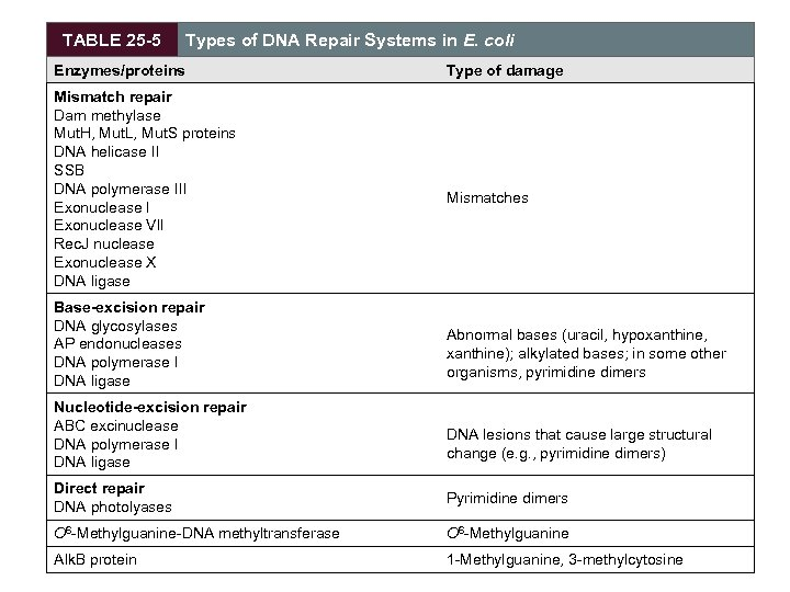 TABLE 25 -5 Types of DNA Repair Systems in E. coli Enzymes/proteins Mismatch repair
