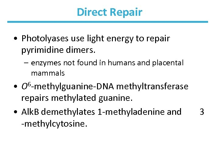 Direct Repair • Photolyases use light energy to repair pyrimidine dimers. – enzymes not