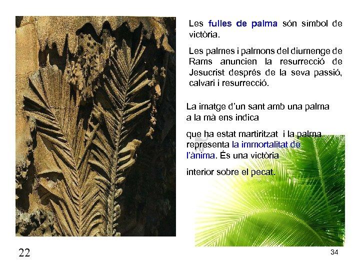 Les fulles de palma són símbol de victòria. Les palmes i palmons del diumenge