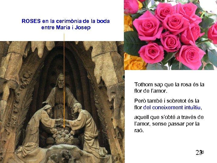 ROSES en la cerimònia de la boda entre Maria i Josep Tothom sap que