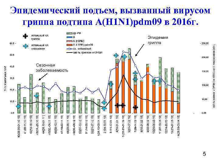 Эпидемический подъем, вызванный вирусом гриппа подтипа A(H 1 N 1)pdm 09 в 2016 г.