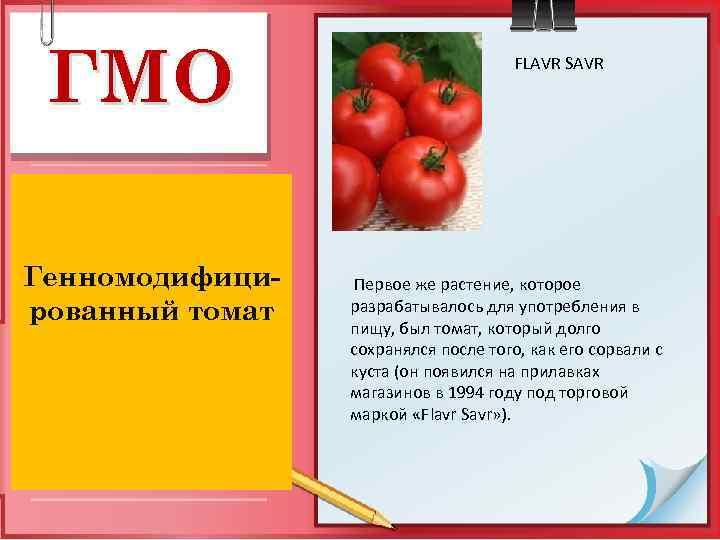 ГМО Генномодифицированный томат FLAVR SAVR Первое же растение, которое разрабатывалось для употребления в пищу,
