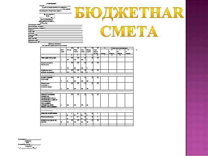 УТВЕРЖДЕНО в сумме __________________ (сумма расходов прописью и цифрами) ________________ тыс. рублей Распорядитель бюджетных