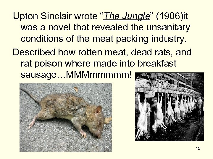 """Upton Sinclair wrote """"The Jungle"""" (1906)it was a novel that revealed the unsanitary conditions"""