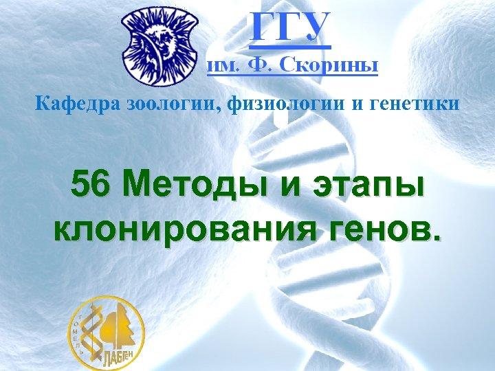 Кафедра зоологии, физиологии и генетики 56 Методы и этапы клонирования генов.