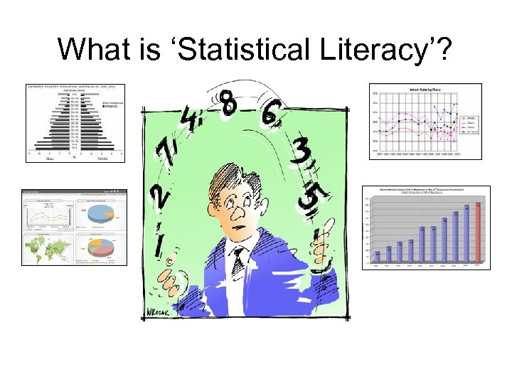 What is 'Statistical Literacy'?