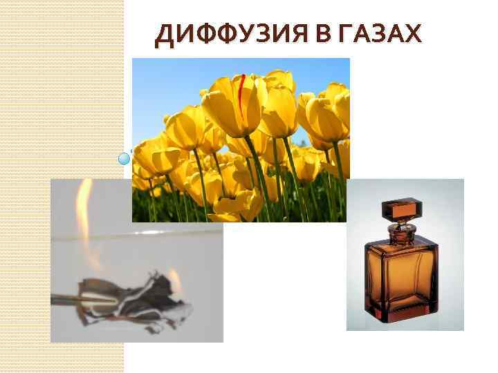 ДИФФУЗИЯ В ГАЗАХ