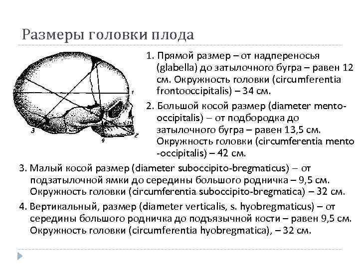 Размеры головки плода 1. Прямой размер – от надпереносья (glabella) до затылочного бугра –