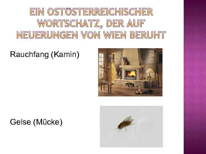 Rauchfang (Kamin) Gelse (Mücke)