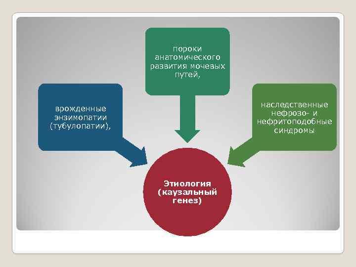 пороки анатомического развития мочевых путей, наследственные нефрозо- и нефритоподобные синдромы врожденные энзимопатии (тубулопатии), Этиология