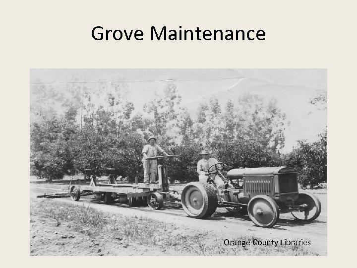 Grove Maintenance Orange County Libraries