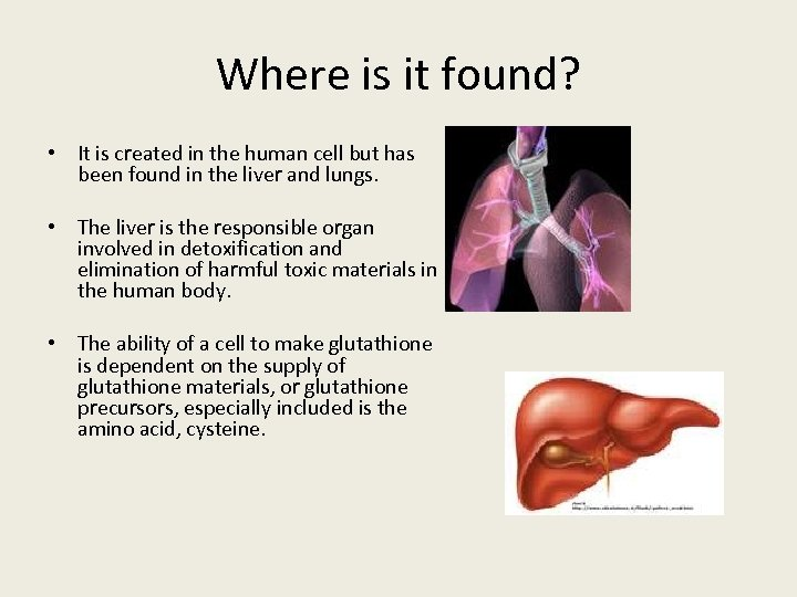 Where is it found? • It is created in the human cell but has
