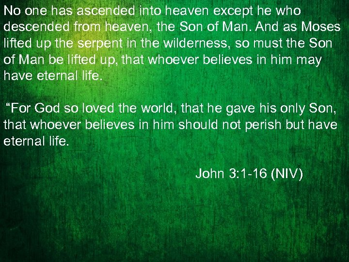 No one has ascended into heaven except he who descended from heaven, the Son