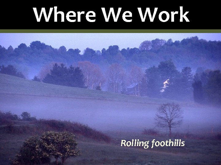 Where We Work Rolling foothills