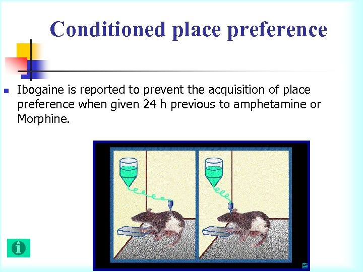 Conditioned place preference n Ibogaine is reported to prevent the acquisition of place preference