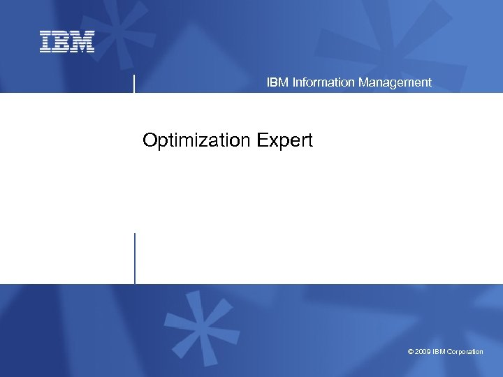 IBM Information Management Optimization Expert © 2009 IBM Corporation