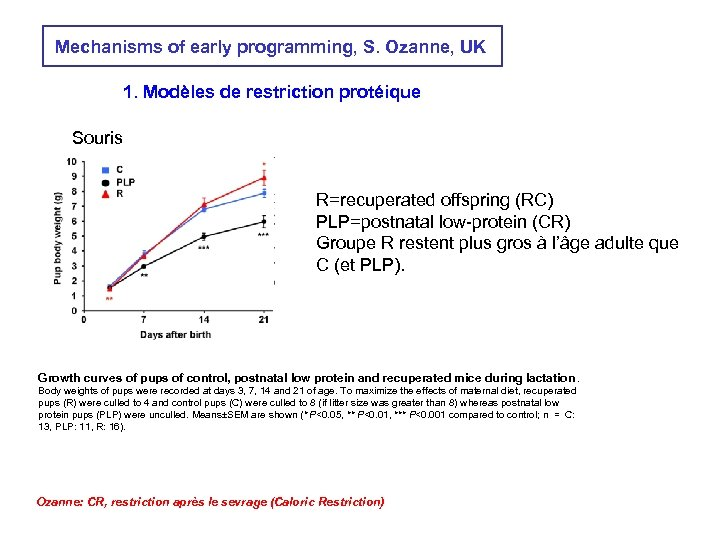 Mechanisms of early programming, S. Ozanne, UK 1. Modèles de restriction protéique Souris R=recuperated