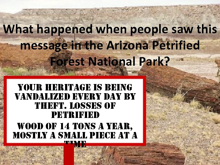 What happened when people saw this message in the Arizona Petrified Forest National Park?