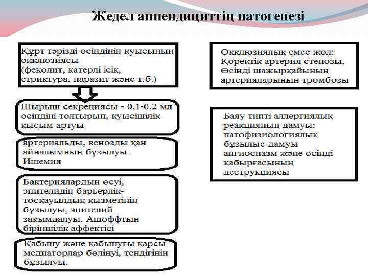 Жедел аппендициттің патогенезі