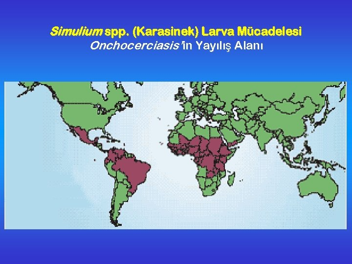 Simulium spp. (Karasinek) Larva Mücadelesi Onchocerciasis'in Yayılış Alanı