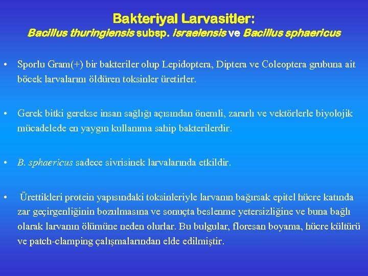 Bakteriyal Larvasitler: Bacillus thuringiensis subsp. israelensis ve Bacillus sphaericus • Sporlu Gram(+) bir bakteriler