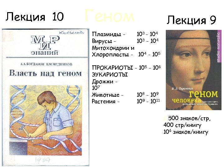 Лекция 10 Геном Лекция 9 Плазмиды 103 - 104 Вирусы 103 - 104 Митохондрии