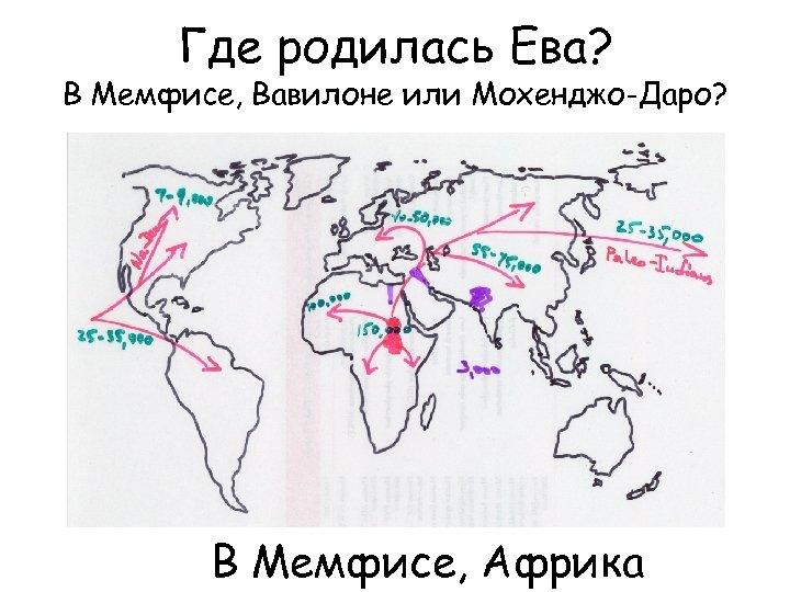 Где родилась Ева? В Мемфисе, Вавилоне или Мохенджо-Даро? В Мемфисе, Африка