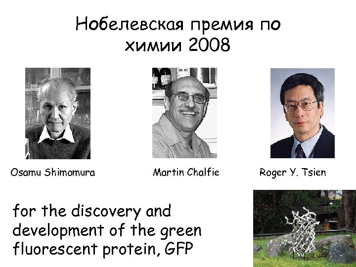 Нобелевская премия по химии 2008 Osamu Shimomura Martin Chalfie for the discovery and development