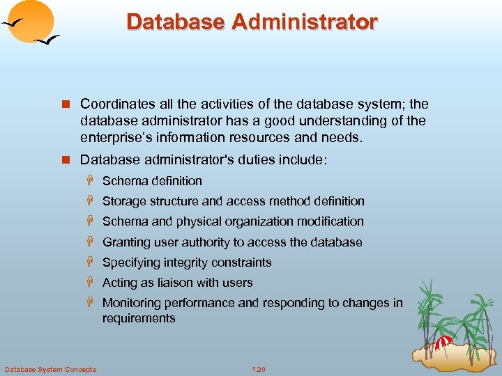 Database Administrator n Coordinates all the activities of the database system; the database administrator