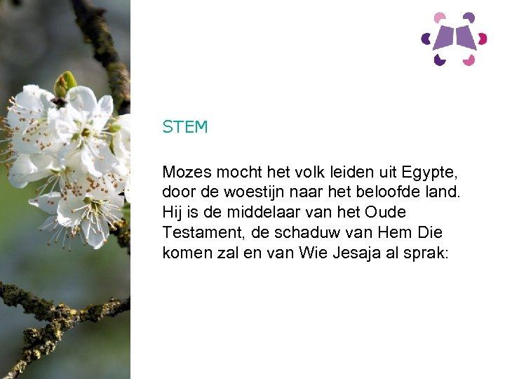 STEM Mozes mocht het volk leiden uit Egypte, door de woestijn naar het beloofde