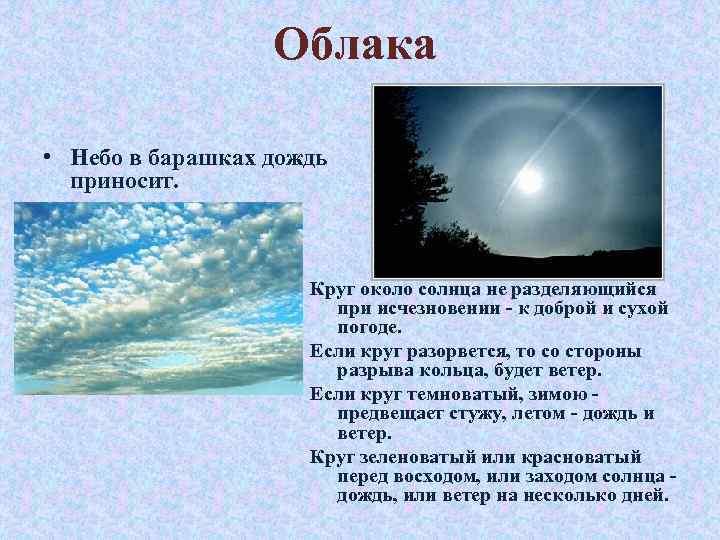 Облака • Небо в барашках дождь приносит. Круг около солнца не разделяющийся при исчезновении
